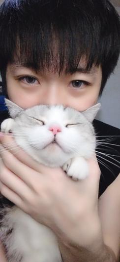 猫咪喂养也有大学问,抖音萌宠主播东门魏官人直播分享喂猫心得