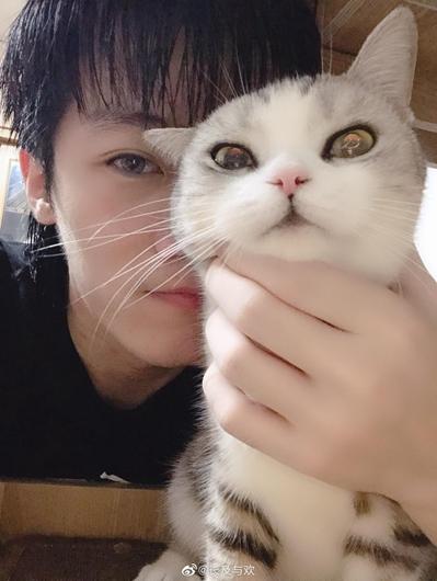抖音主播东门魏官人携萌宠亮相直播间,一人一猫互动超有爱!