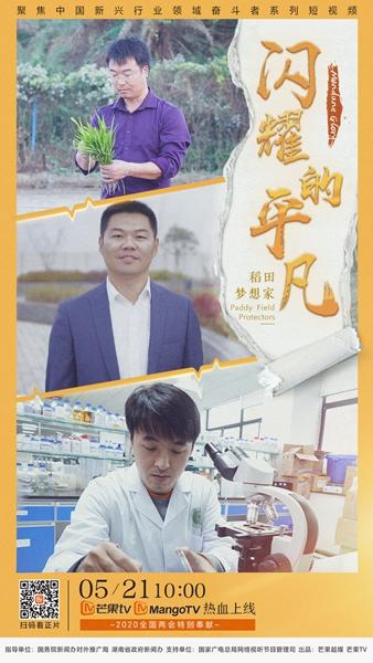 """《闪耀的平凡》芒果TV上线,走近袁隆平团队的""""水稻奇迹"""""""